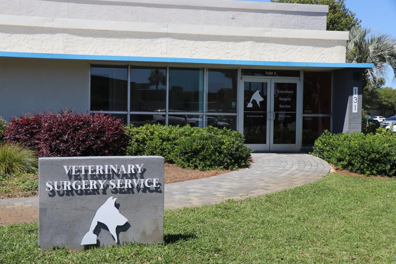 surgeryvet com - Ft  Walton Beach, FL - Home